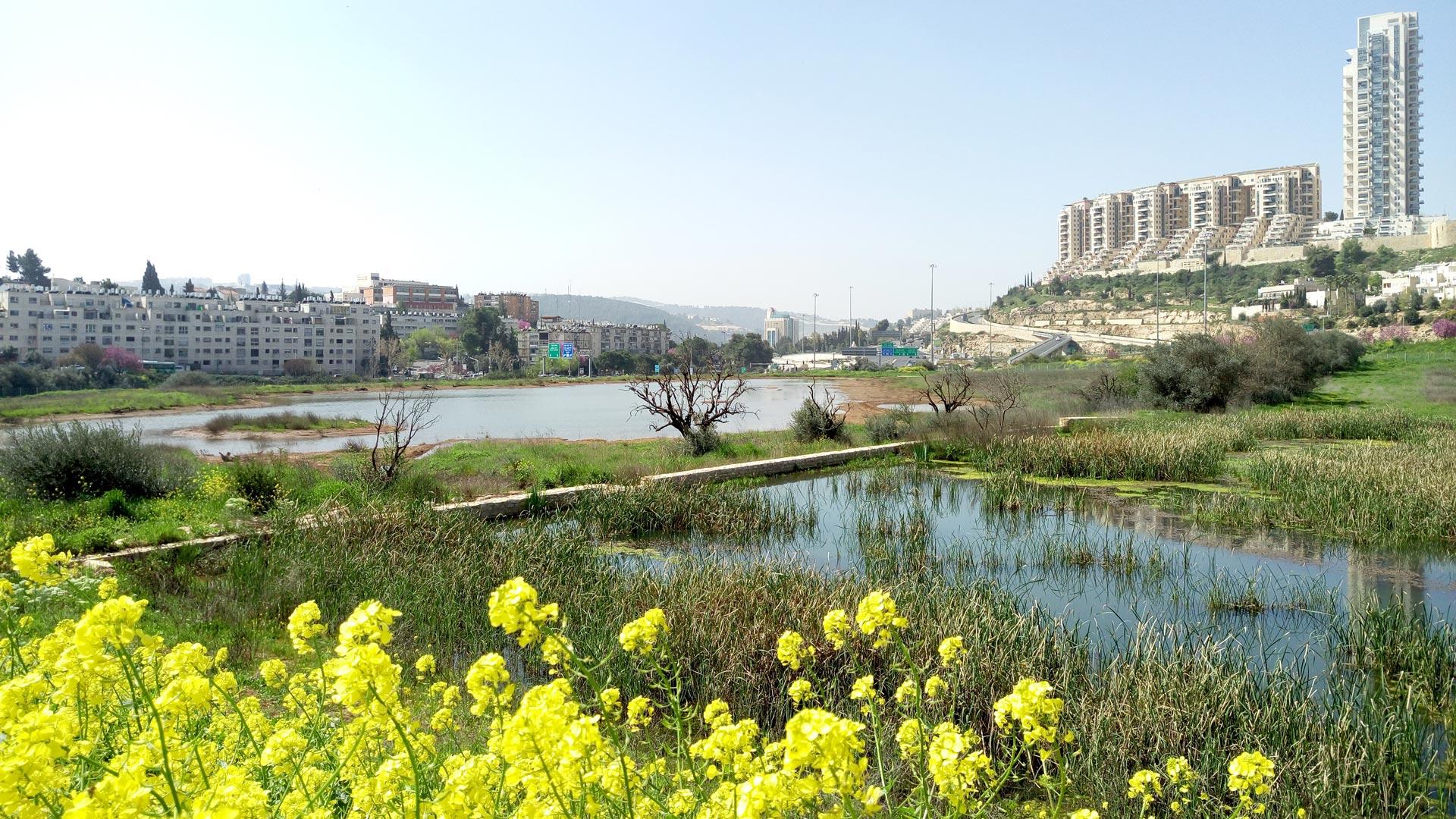 עמק הצבאים, ירושלים